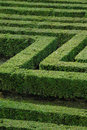 Green maze Stock Photography