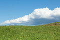 Green meadow with cumulus clouds Stock Photos