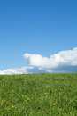 Green meadow with cumulus clouds Stock Photo