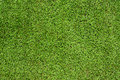 Green meadow grass field soccer or football Royalty Free Stock Photography