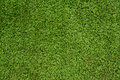 Green meadow grass field soccer or football Royalty Free Stock Image