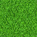 Green meadow grass seamless tileable texture Stock Photo