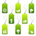 Green mini eco tags Stock Image