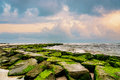 Green Moss on Stone Jetty on Beach Royalty Free Stock Photo
