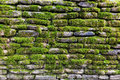 Green moss on stone wall Royalty Free Stock Photo