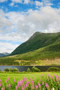 Green mountain above the fjord. Stock Photo
