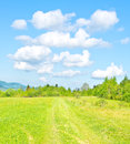 Green mountain meadow Stock Image