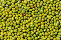 Green mung beans closeup Stock Image
