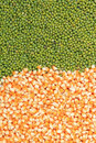 Green mung beans and corn grains Royalty Free Stock Photo