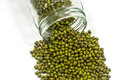 Green mung beans flowing out of glass jar Stock Photos