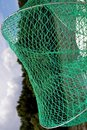 Green net for fish Royalty Free Stock Photo