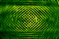Green net and round background Royalty Free Stock Photo