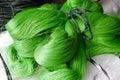 Green nylon yarn for fishing or woven fishing nets Royalty Free Stock Photos