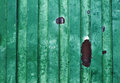 Green old grungy metal surface - background - texture Royalty Free Stock Photo