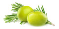 Green olives and rosemary over white background Royalty Free Stock Image