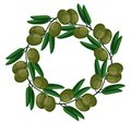 Green olives wreath Vector. Round frame of leaves. Natural decor of plants. Vector cartoon illustration. Green, cute
