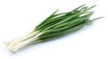 Green onion on a white background Stock Photography