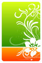 Green and orange floral design card Royalty Free Stock Photo