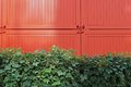 Green and orange hedge container Stock Image
