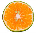 Green orange slice Royalty Free Stock Photography