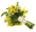 Green orchid wedding bouquet on white Royalty Free Stock Photography