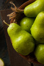 Green organic bartlett pears in a bowl Stock Image