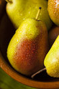 Green organic healthy pears ripe and ready to eat Stock Photo