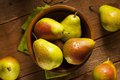 Green organic healthy pears ripe and ready to eat Royalty Free Stock Photo