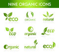Green organic icons nine for ecological topics Stock Images