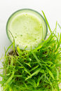 Green Organic Wheat Grass Juice ready to drink Royalty Free Stock Photo