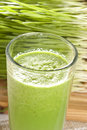 Green Organic Wheat Grass Shot Royalty Free Stock Photos