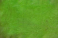 Green painted artistic canvas background Royalty Free Stock Photo