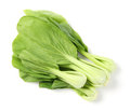 Green pak choi close up vegetable on white Royalty Free Stock Photo