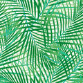 Green palm leaves seamless pattern of Stock Image