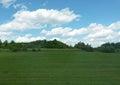 Green panorama background Royalty Free Stock Photo