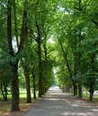 In the green parc vilnius lithuania Stock Photography