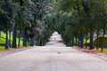 Green park. Running man Royalty Free Stock Photo