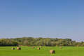 Green pasture with haystacks in rural minnesota field Royalty Free Stock Images