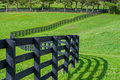 Green pastures of horse farms. Countryside spring landscape. Royalty Free Stock Photo