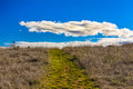 Green Path Leading to Horizon with White Puffy Clouds Stock Images