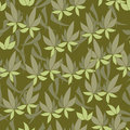 Green pattern floral on background Stock Photos
