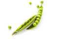 Green pea still life of fresh ripe peas with peas on a white background Royalty Free Stock Images