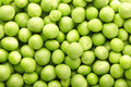 Green peas background Stock Photos
