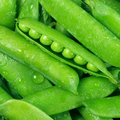 Green peas pile Royalty Free Stock Photo