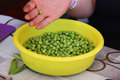 Green peas with a woman s hand food photography Stock Image