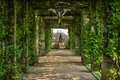 Green pergola Royalty Free Stock Photo