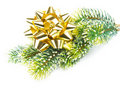 Green pine tree with golden ribbon. christmas Stock Photography