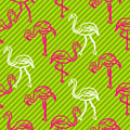 Black and pink striped flamingo bird pattern.