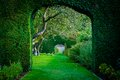 Green plant arches in english countryside garden uk Stock Photography