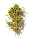 https---www.dreamstime.com-stock-illustration-dollar-symbol-form-green-plant-isolated-image107135035